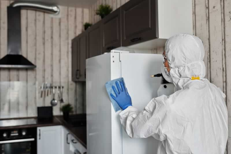7 Tips for Keeping Your Home Clean - disinfection