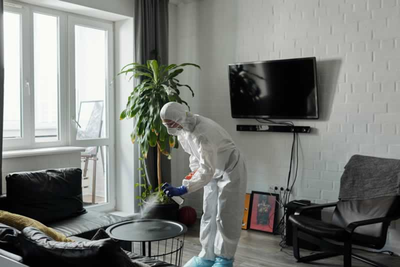 7 Tips for Keeping Your Home Clean