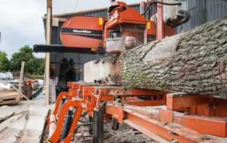 Factors To Consider When Procuring Hardwood