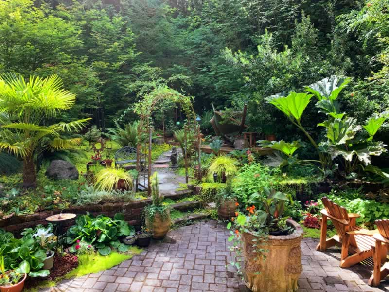 How To Turn Your Backyard Into An Oasis - amazing backyard