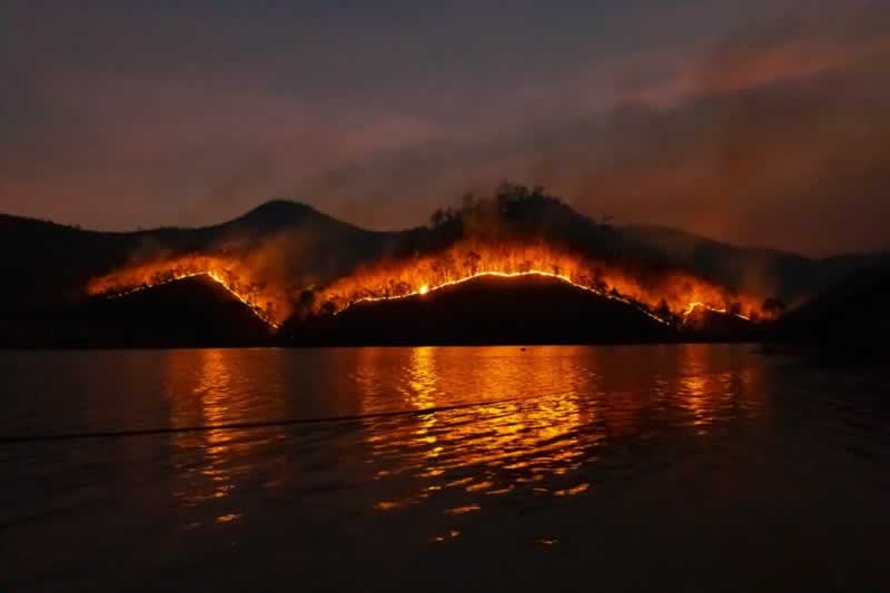 6 Essential Things You Need If You Live in High-Risk Wildfire Areas