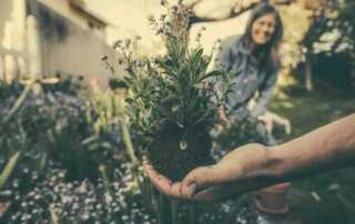 6 Useful Gardening Tools You Need To Have - planting