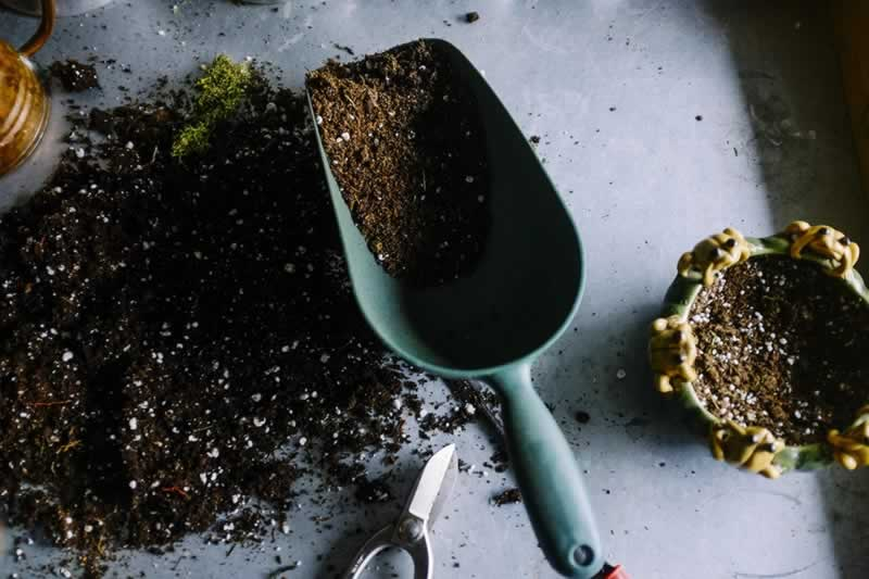 6 Useful Gardening Tools You Need To Have