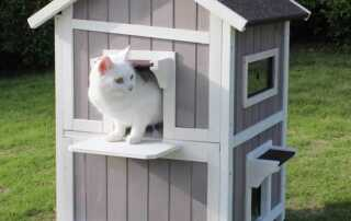 How to Build a House for Your Pet - cat house