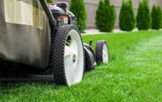 Lawn Mowers 101