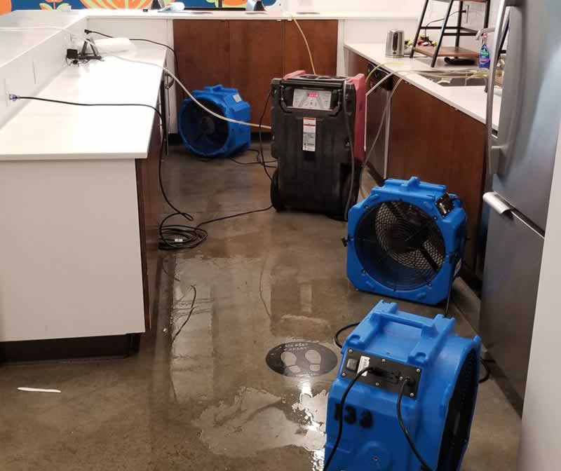 Questions to ask a water damage company before hiring them - drying