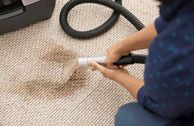 The Professional Carpet Cleaning - stain