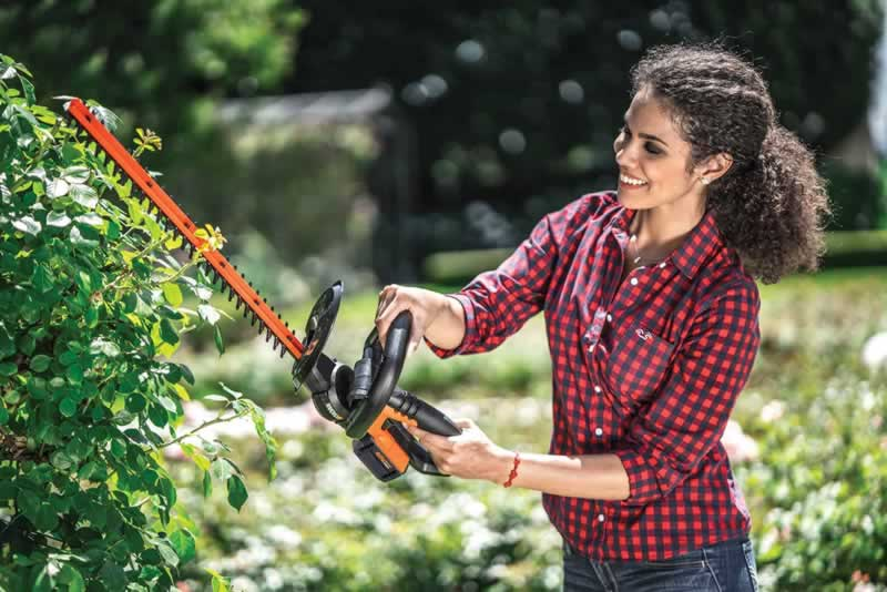 DIY Hedge Trimming At Its Very Best - hedge trimming