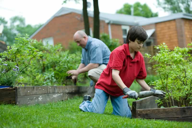 Great Ideas To Completely Transform Your Garden This Spring - planting