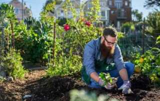 How To Choose The Best Garden Tools - new leaf