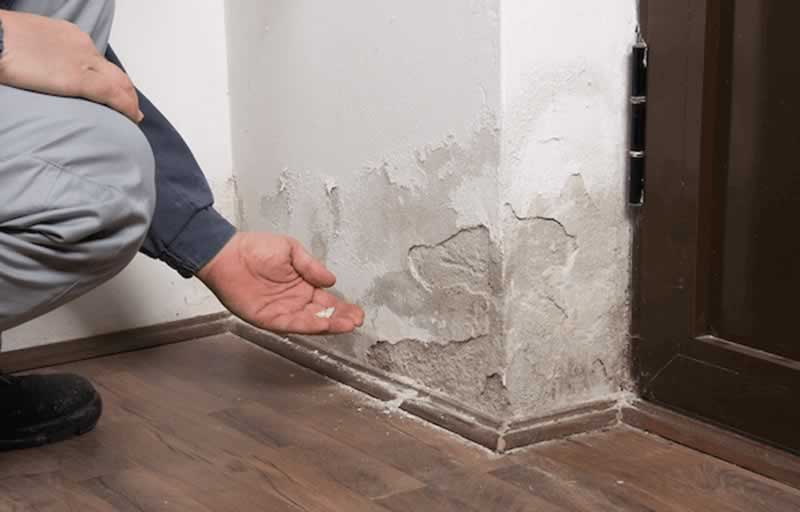 How to Spot Water Damage in Your Home