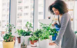 """Is Indoor Gardening """"Just Another Hobby"""" - indoor garden"""