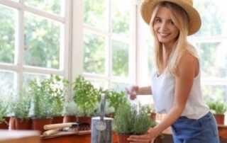 Popular fastest-growing indoor plants for beginners