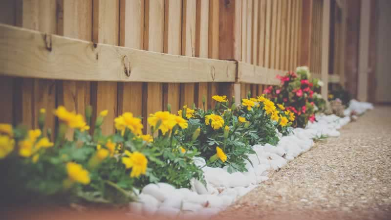 Practical Landscaping Tips Every Residential Property Owner Should Know