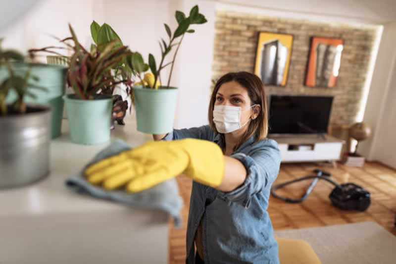 Tips and Tricks For Keeping your House, Garage, and Yard Clean