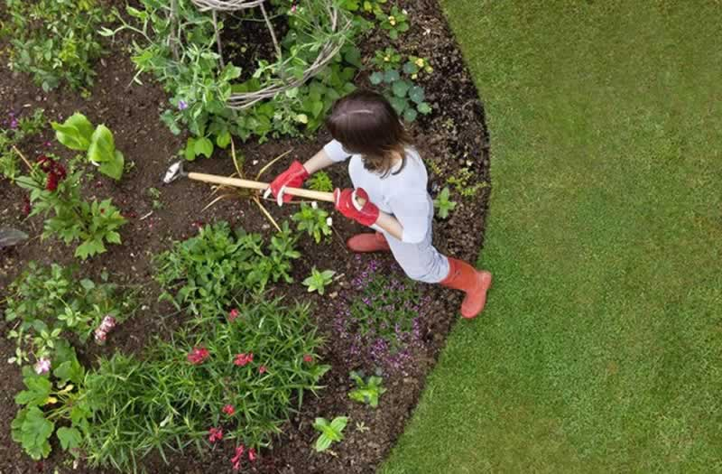 8 Yearly Home Maintenance Checks That You Can't Forget - garden