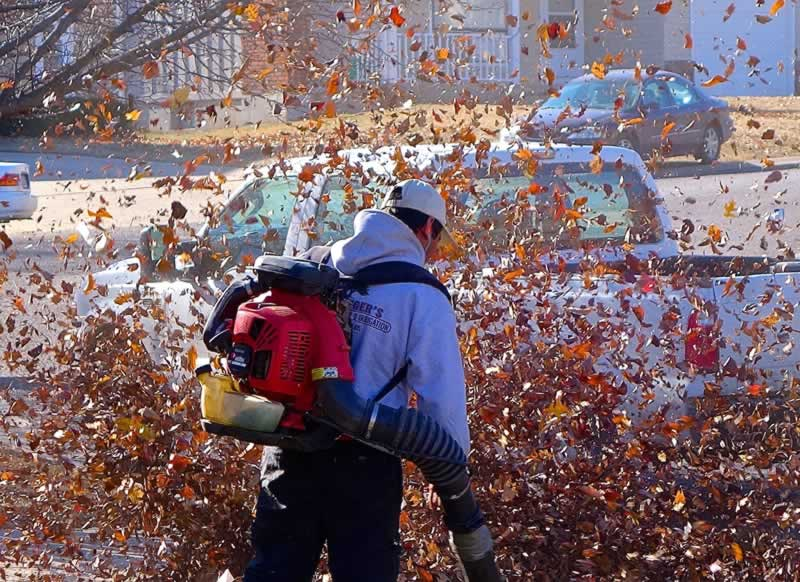 Are Leaf Blowers a Threat to Your Car