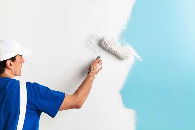 DIY vs Painting Professionals - professional