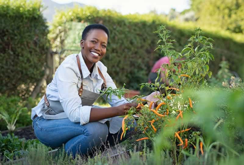 Health Benefits of Gardening - gardening