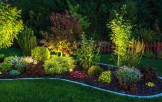 How Outdoor Lighting Can Increase Your Home's Value- plants
