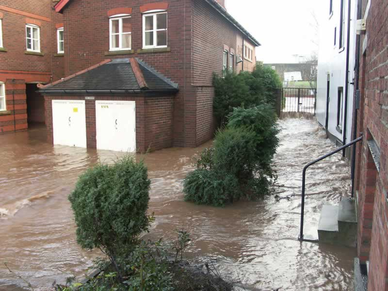 Professional standing water removal services after the storm