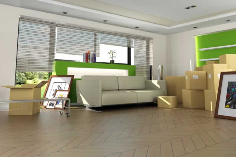 Storage Solutions for Home Renovation