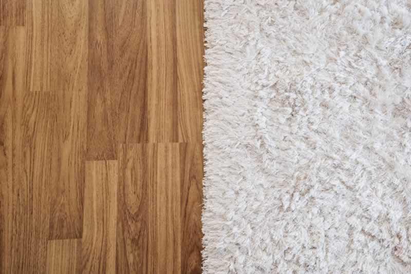 Carpet or Hardwood