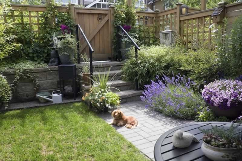 How to Hire the Best Landscaping Design Company In Reno - backyard