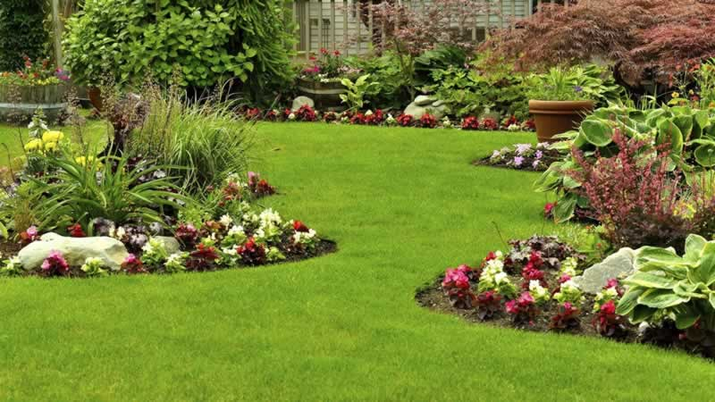 How to Hire the Best Landscaping Design Company In Reno