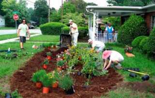 Garden Installation for the Best Gardens