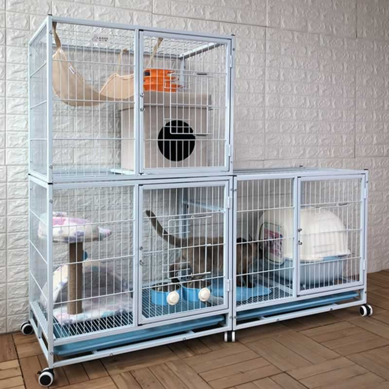 How long can a cat remain in an indoor cage