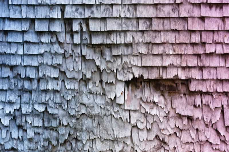 Roof Maintenance Do's and Don'ts According to the Experts