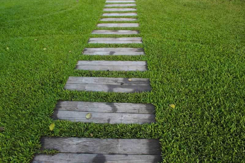 Useful DIY Landscaping Tips From the Pros
