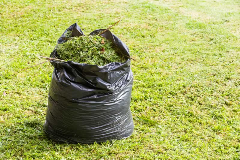 3 Ways To Make Better Use Of Your Yard Waste - mulch