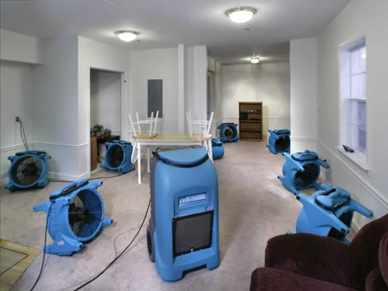 4 Steps of Every Water Mitigation Process - dryers