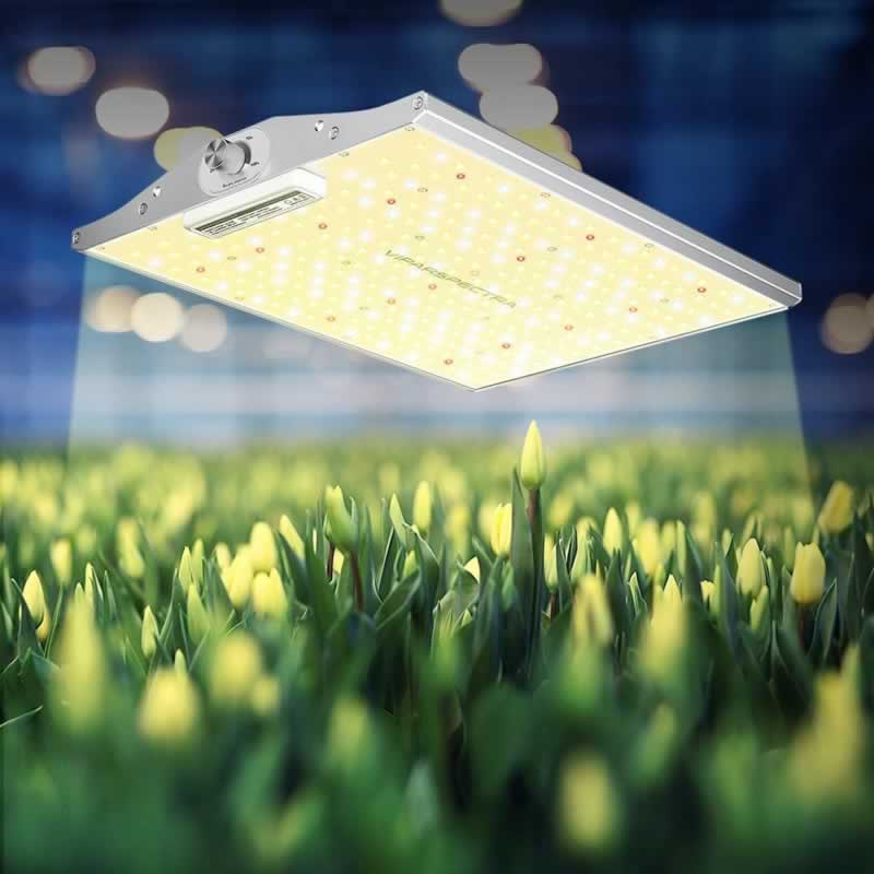 Best LED Grow Lights 2021 - ViparSpectra XS Series