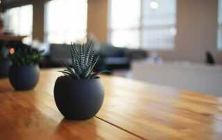 Essential Oils to Wooden Surfaces