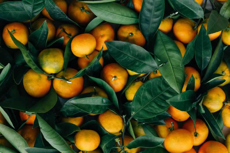 Essential Oils to Wooden Surfaces - tangerine