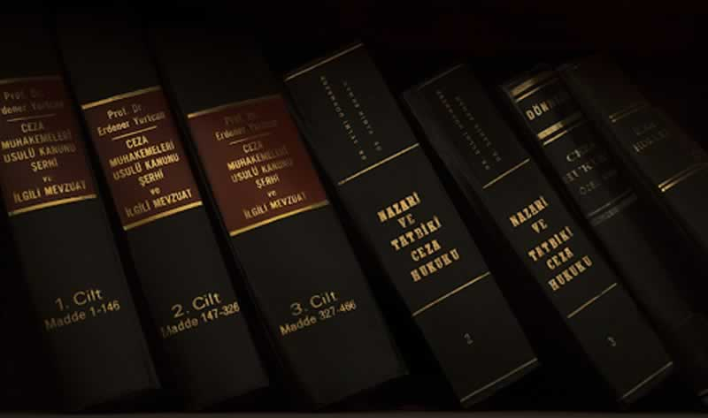 How To Get Effective Legal Advocacy - books