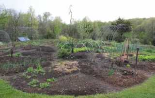 The Benefits of Going for a DIY Lasagna Gardening - lasagna garden