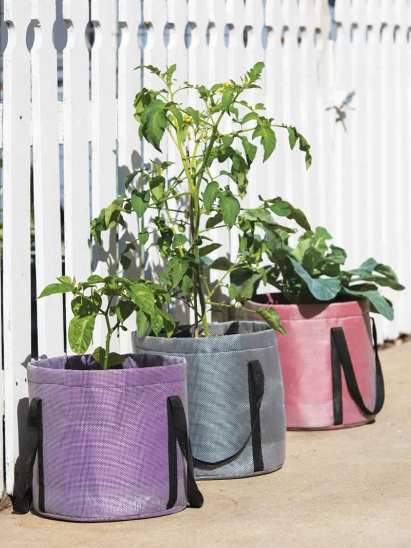 What Color of Grow Bags Are Best