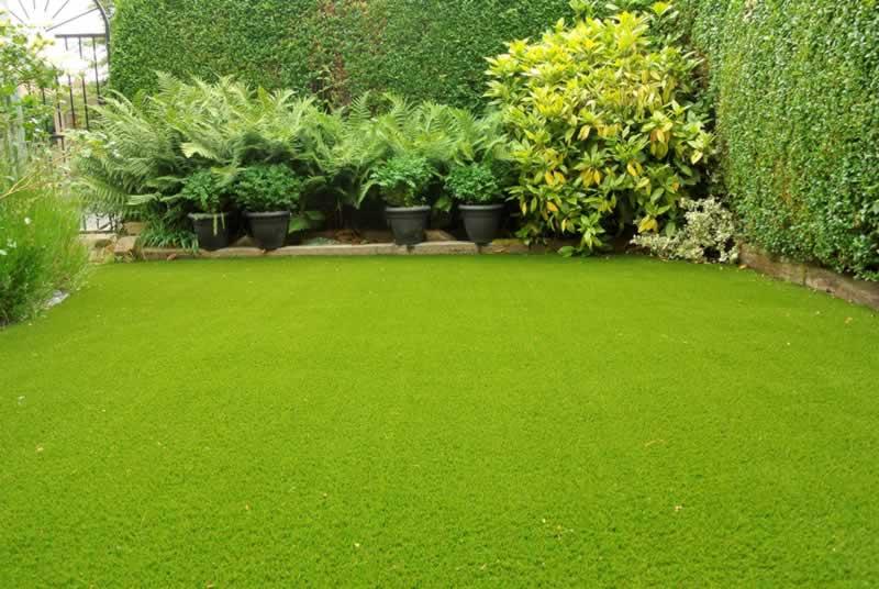 10 Tips for An Effortless Garden - lawn