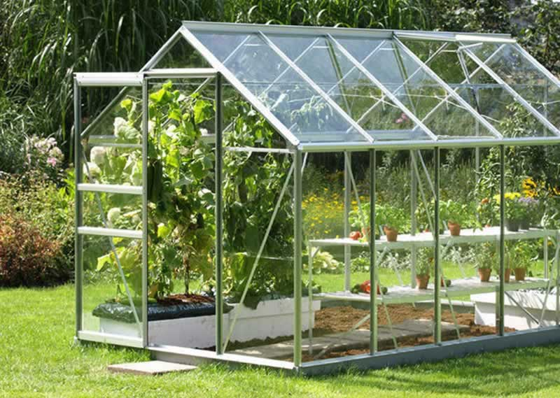 4 Ways to Keep Your Greenhouse Cool in Summer