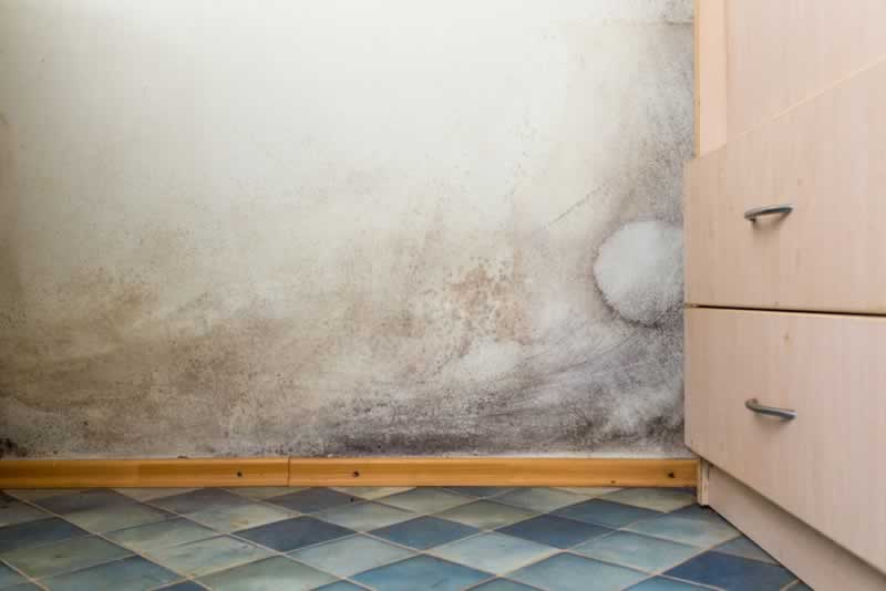 7 Household Issues That Should Make You Consider Home Renovation Right Away