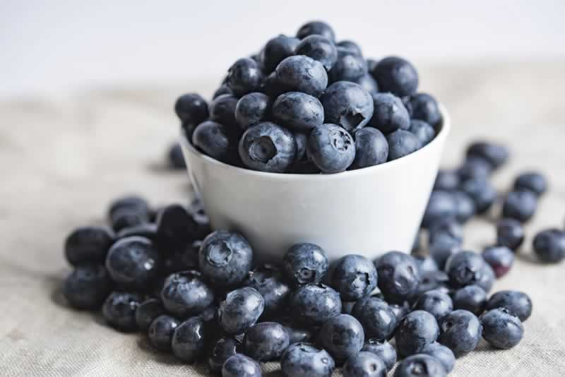 Low-Maintenance Vegetables And Fruits That You Can Easily Grow In Your Garden - blueberries