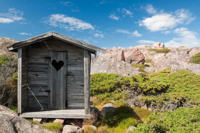 Thinking Of Building A Shed In Your Garden