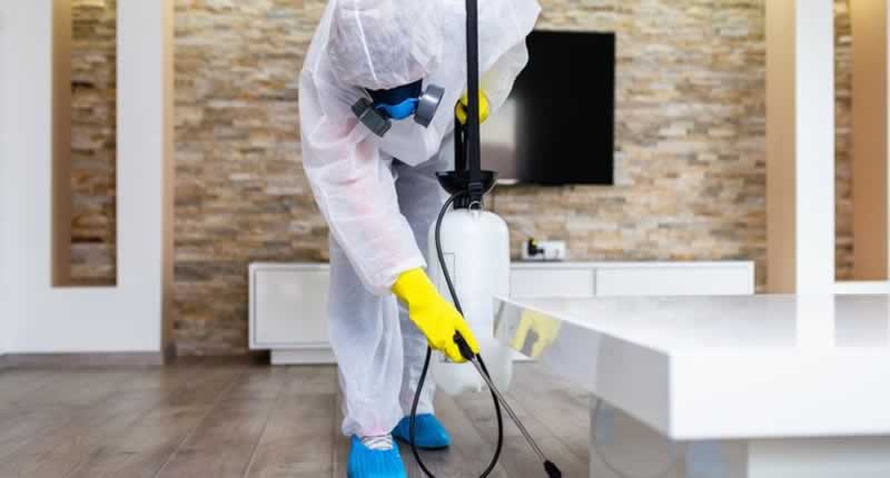 Choosing the correct pest control supplier